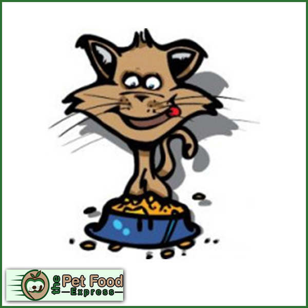 Bandit Kat